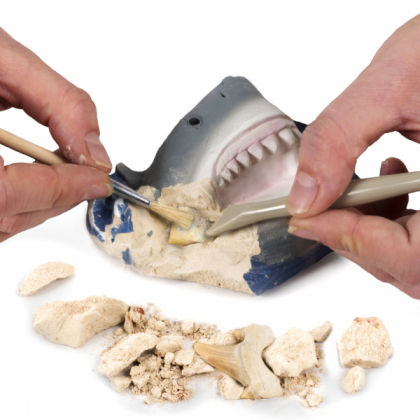 NATIONAL GEOGRAPHIC   Shark Tooth Dig Kit (Genuine Shark Tooth FOSSIL Inside!)   STEM Scientific Educational Toys For Boys Girls Kids