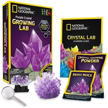 NATIONAL GEOGRAPHIC   Purple Crystal Growing Lab (Genuine AMETHYST Specimens Inside!)   STEM Scientific Educational Toys For Boys Girls Kids